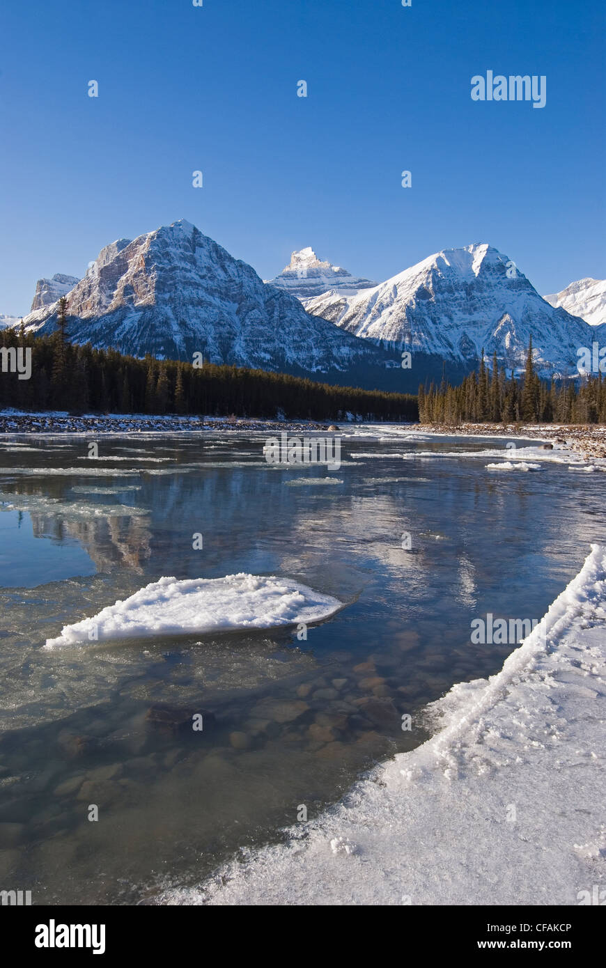 The Rocky Mountains, form a picturesque backdrop to the Athabasca river in early winter just South of Jasper, Alberta, - Stock Image