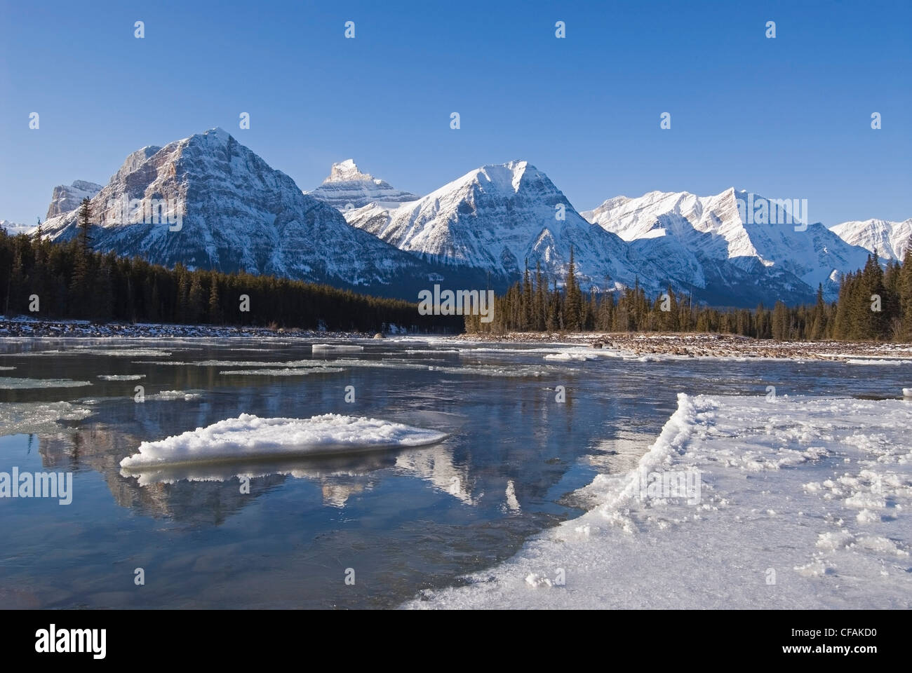 On an early winter day the Athabasca River carries ice past the Rocky Mountains, near Jasper, Alberta, Canada. - Stock Image