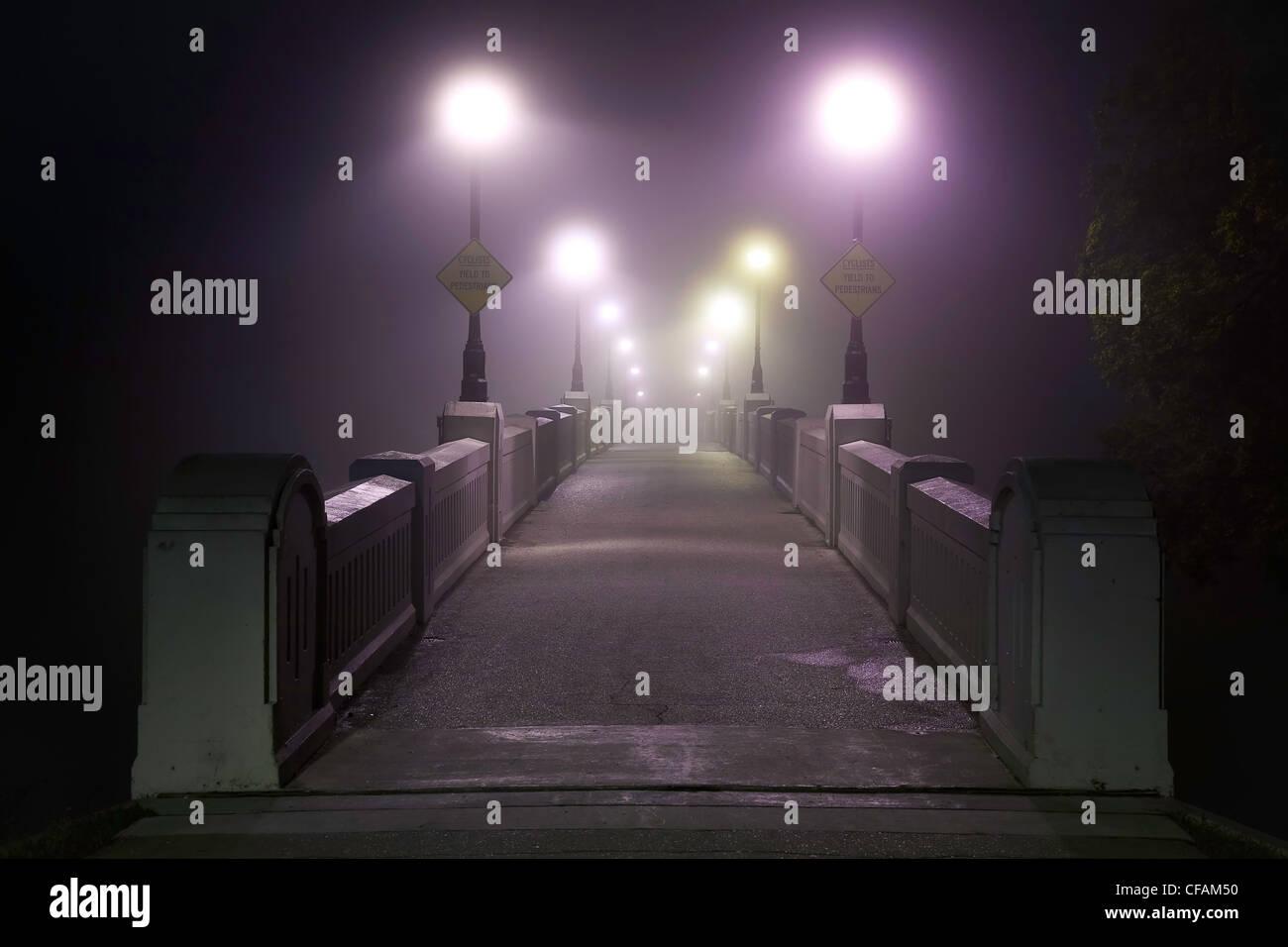 Assiniboine Park Footbridge crossing the Assiniboine River on foggy morning. Winnipeg, Manitoba, Canada. - Stock Image