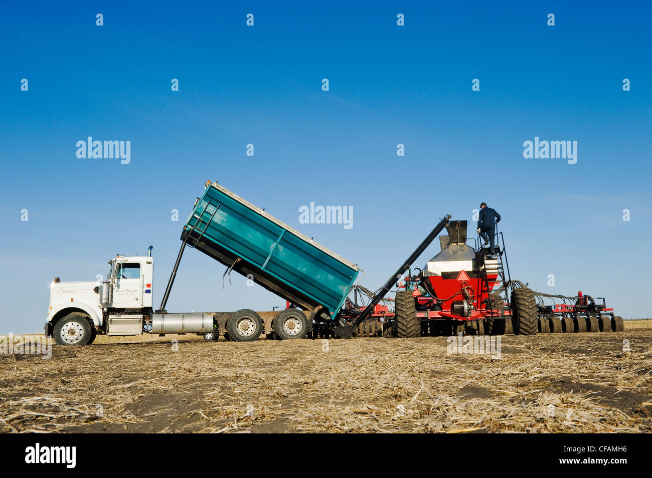 farmers loading a seeding tank with wheat seed , near Lorette, Manitoba, Canada - Stock Image