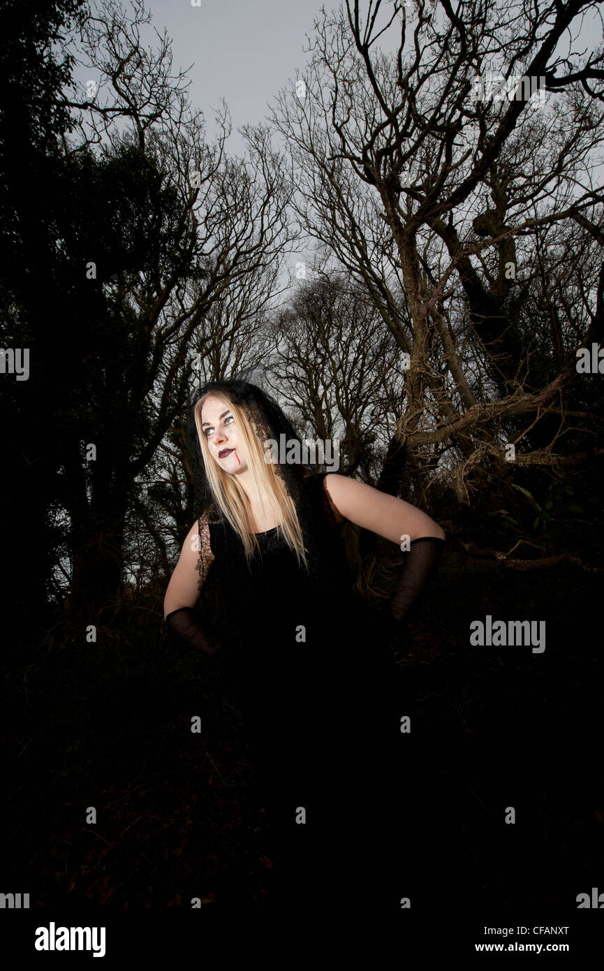 a young attractive blonde Vampire woman in woodland forest - Stock Image