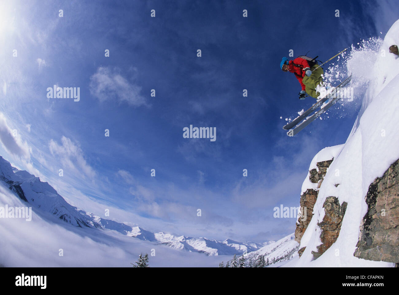A female skier jumping a cliff in the backcountry of Kickinghorse Resort, Purcell Range, Golden, British Columbia, - Stock Image
