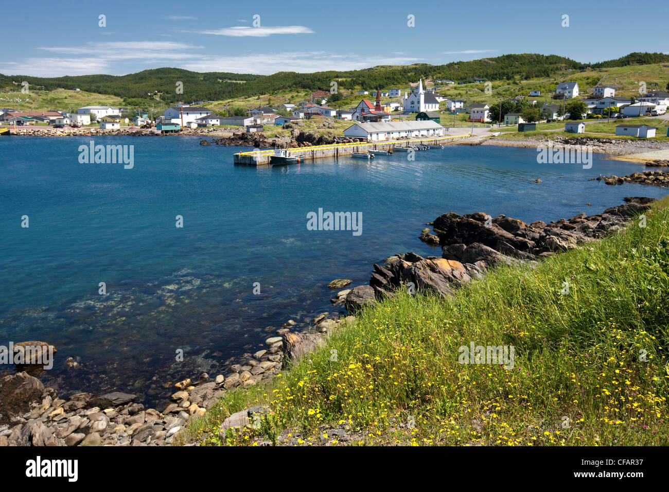 Fishing boats tied up at the wharf in Winterton, Newfoundland and Labrador, Canada. - Stock Image
