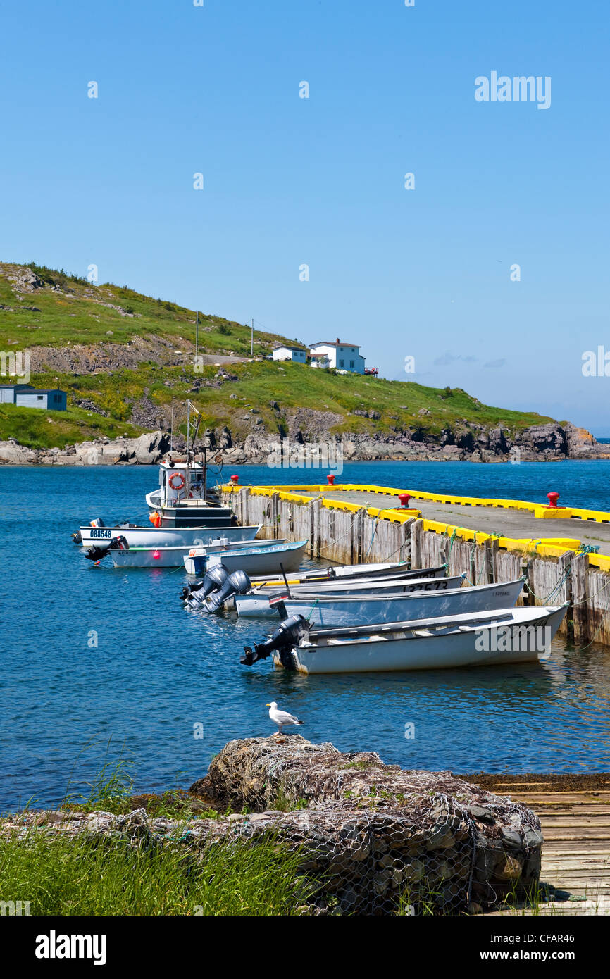 Fishing boats tied up at the wharf in Winterton, Newfoundland and Labrador, Canada. Stock Photo