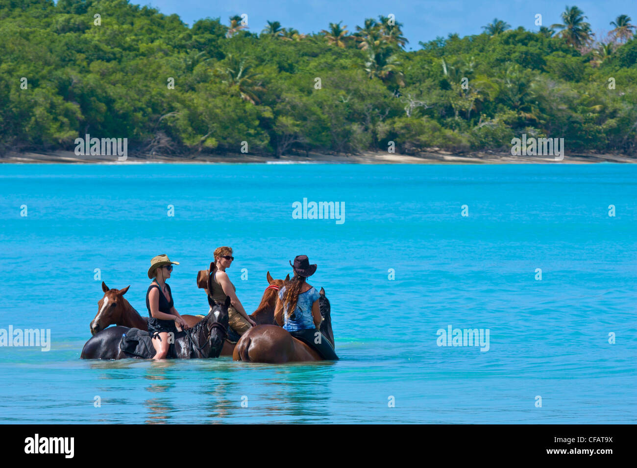 View of Buccoo Bay, Tobago with horse-riders in sea - Stock Image