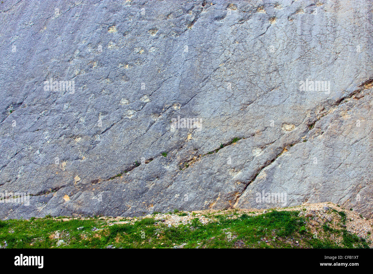 Lommiswil, saurian tracks, dinosaurs, Switzerland, canton Solothurn, stone quarry, rock, cliff, fossilization, fossils, - Stock Image