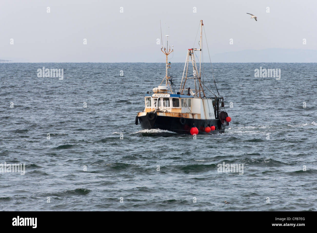 Inshore fishing boat BCK16 'Aspire' approach entrance to Burghead Harbour on the Moray Firth - Stock Image