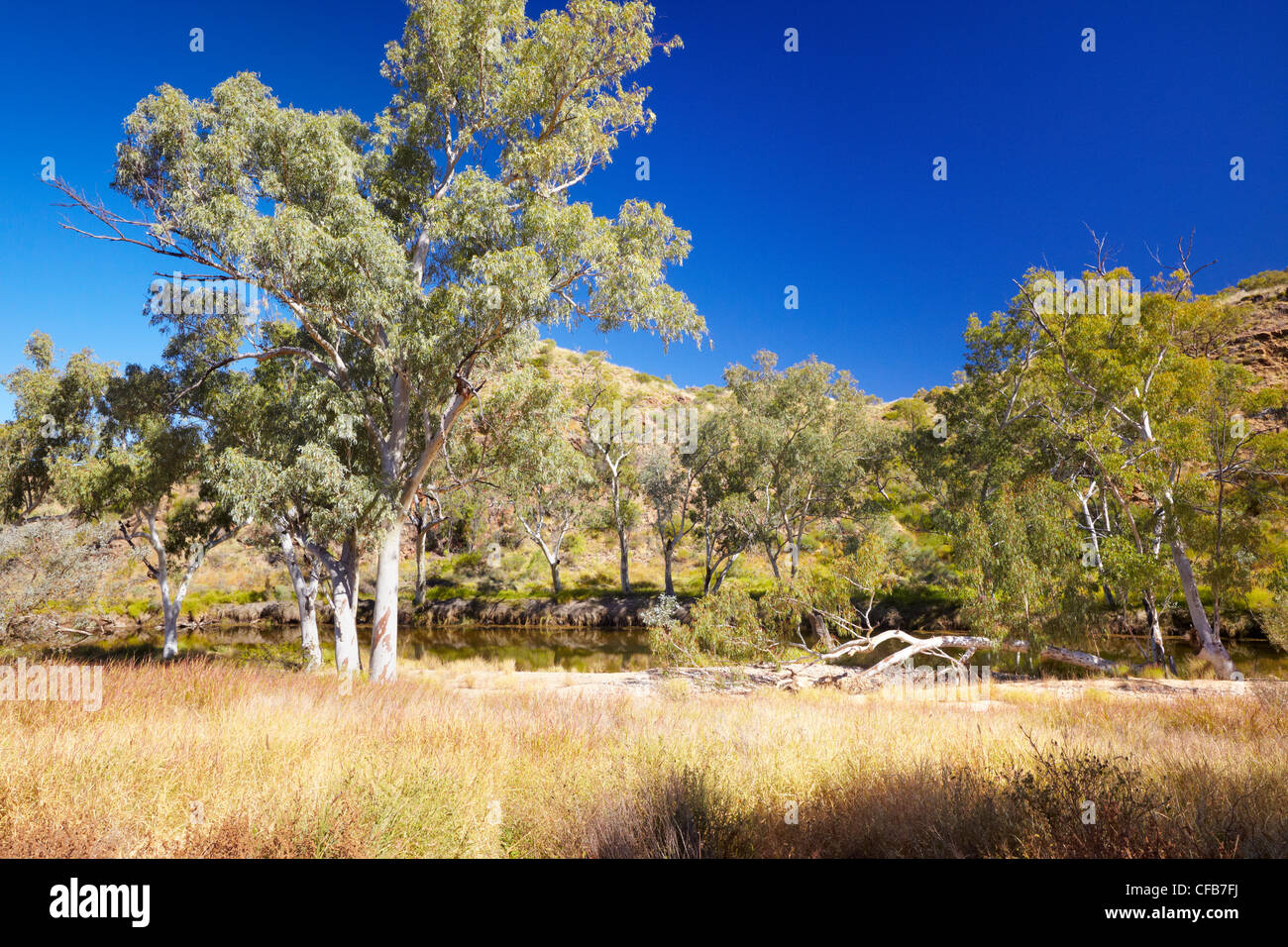 West MacDonnell National Park, Northern Territory, Australia - Stock Image