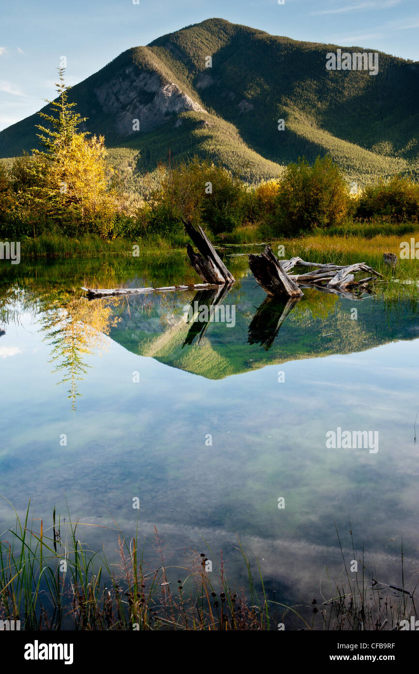 Calm waters of Vermilion Lakes reflect Sulphur Mountain, Banff Alberta Canada. Stock Photo