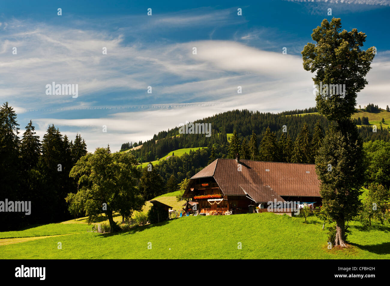 farm, farm house, farmstead, grassland, mountain farmer, Emmental, canton Bern, landscape, scenery, agriculture, - Stock Image