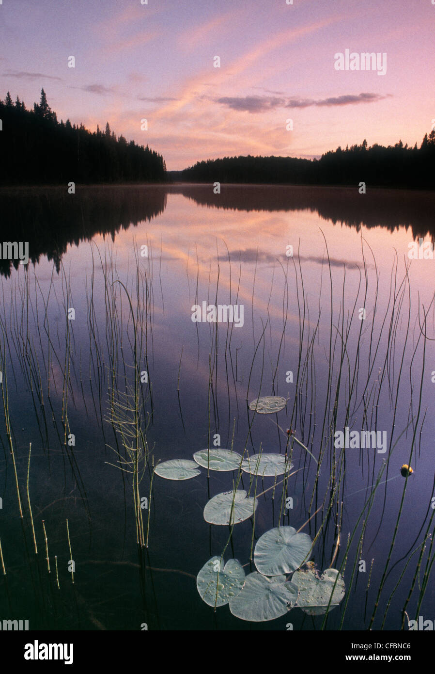Two Mile Lake, Duck Mountain Provincial Park, Manitoba, Canada - Stock Image