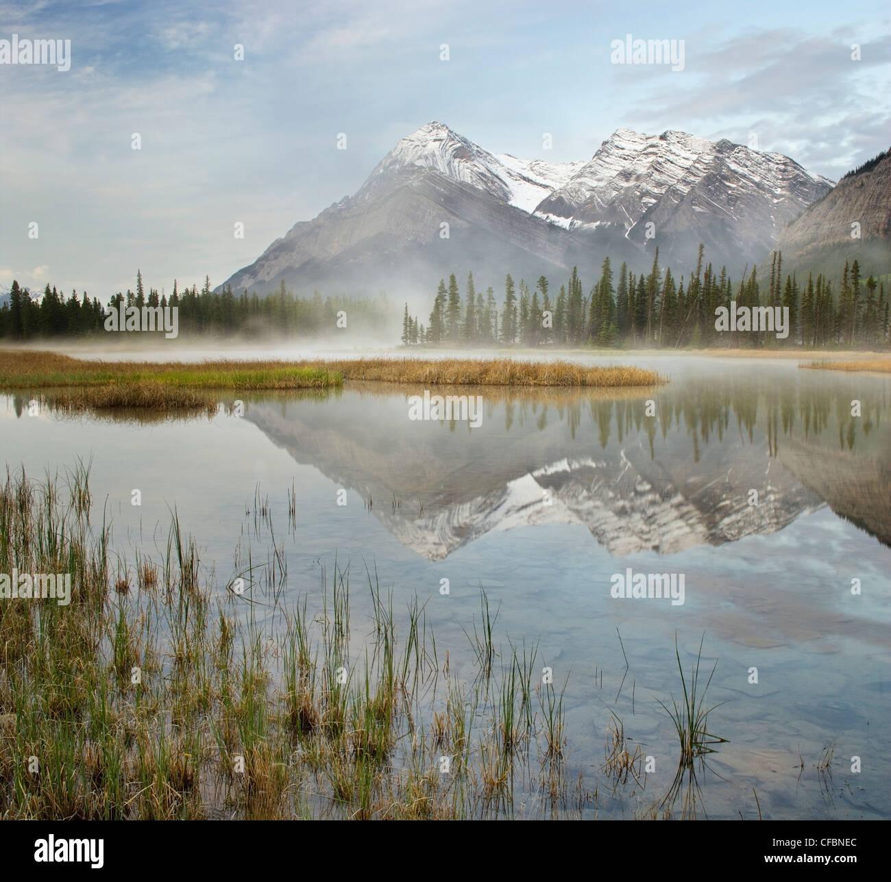 Misty Lake: Misty Lake Ecological Preserve Stock Photos & Misty Lake