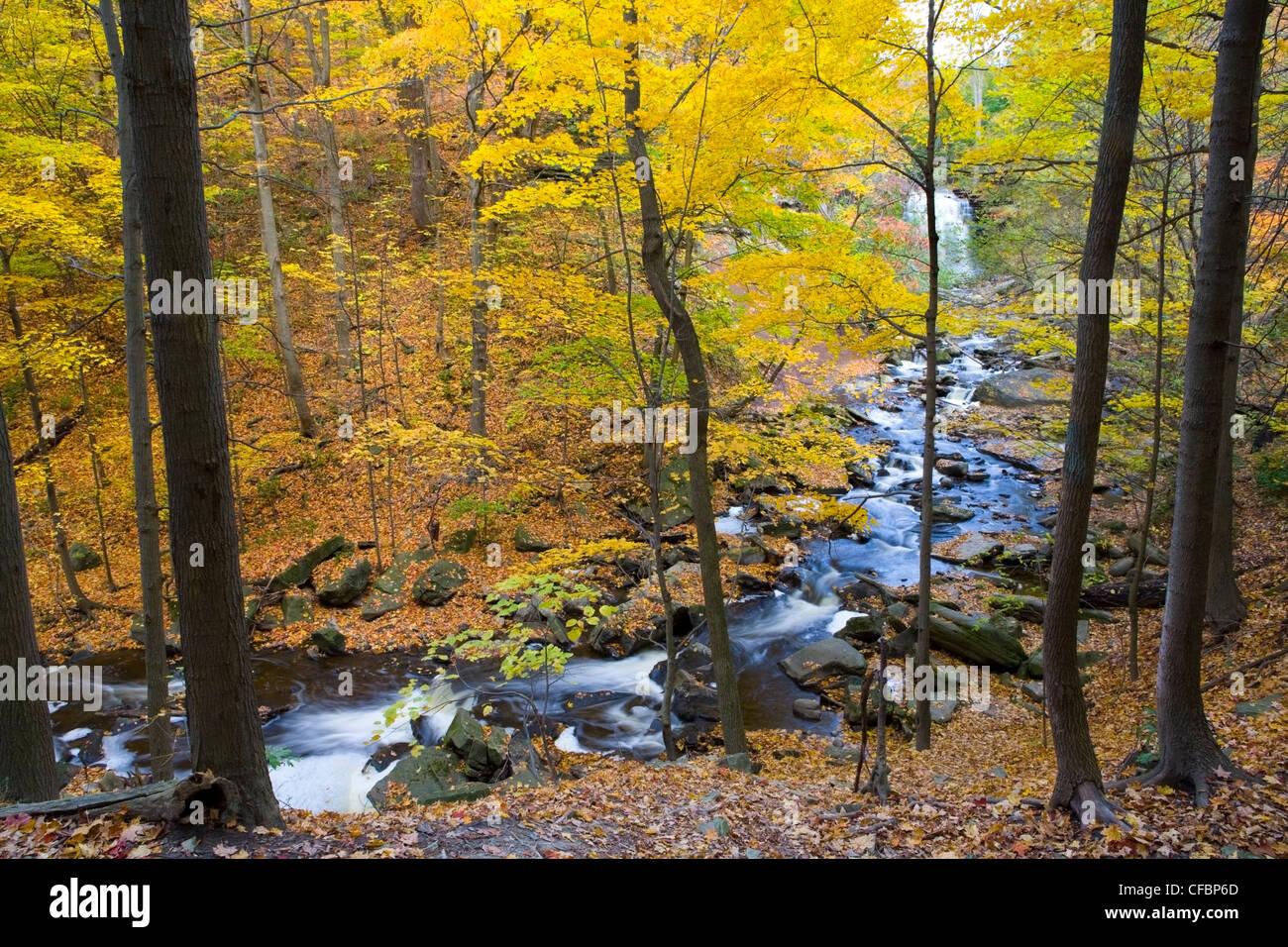 Grindstone Creek and Grand Falls in fall, Bruce Trail, Niagara Escarpment, Hamilton, Ontario, Canada - Stock Image