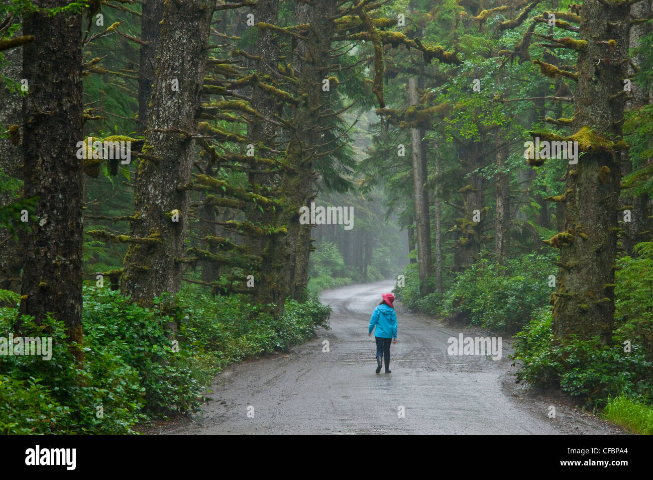 Young girl walking road rainforest Tow Hill - Stock Image