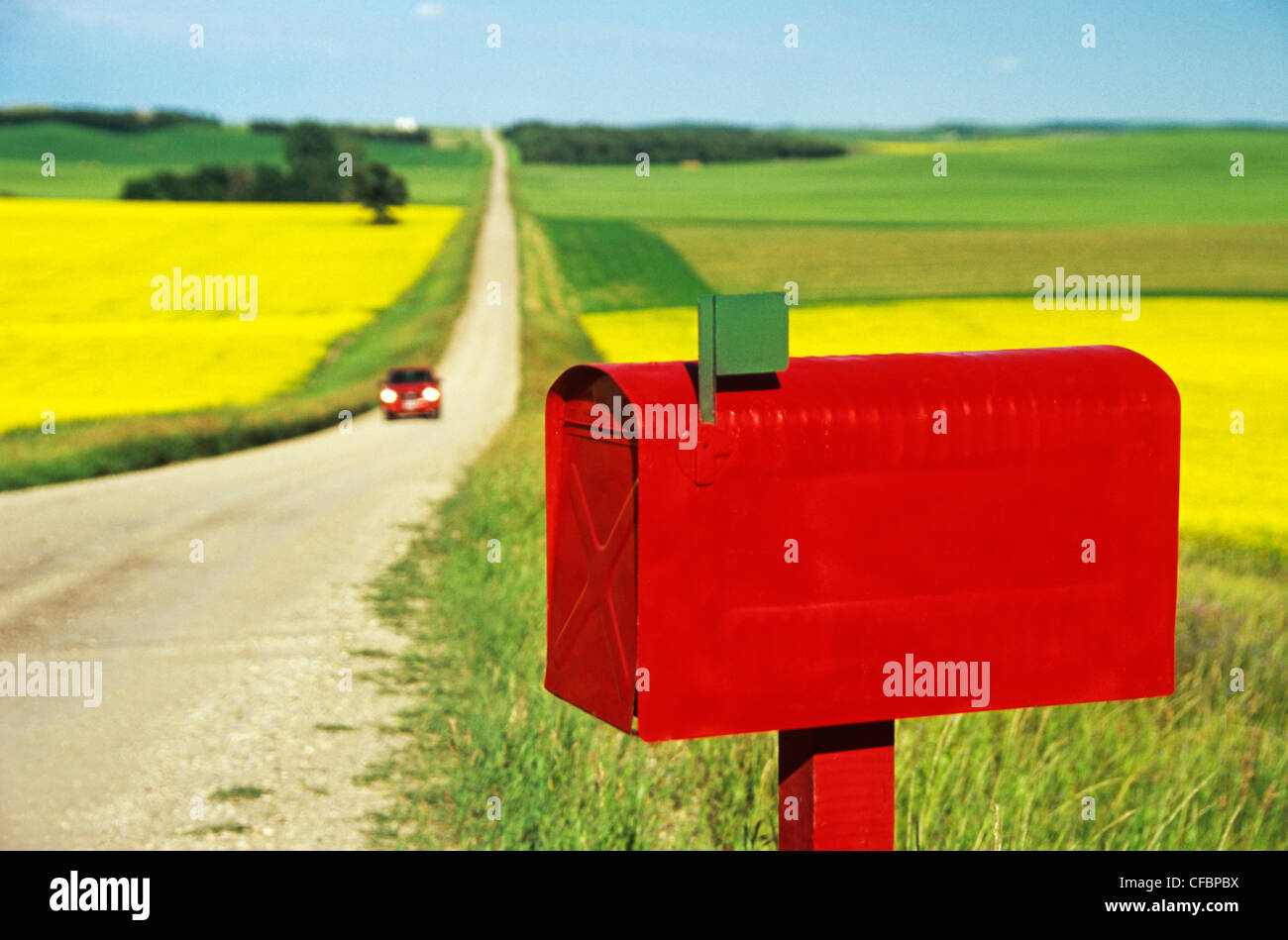 Red mailbox along country road with grain and canola fields in the background near Holland, Manitoba, Canada Stock Photo