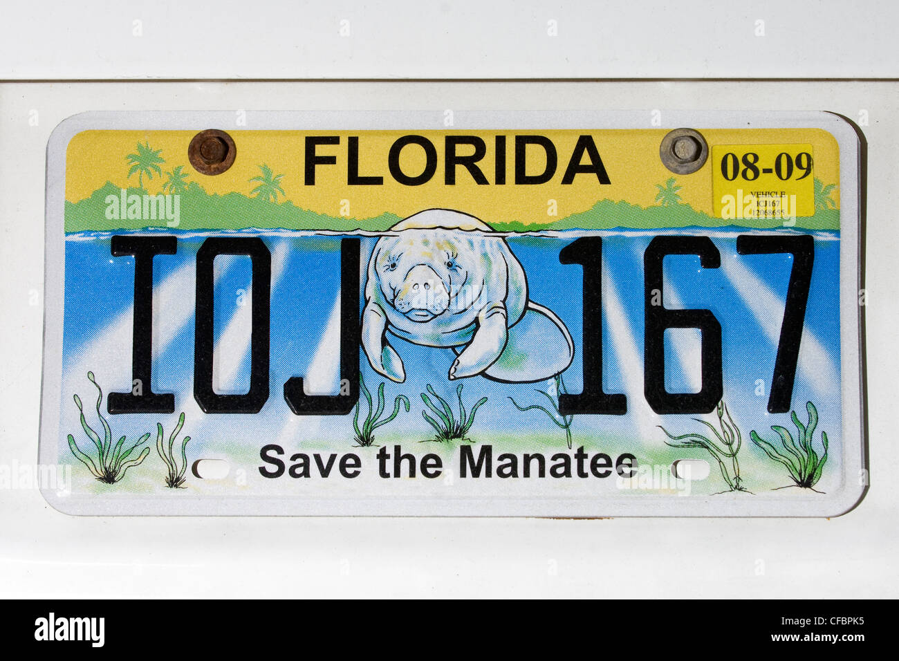 Save the manatee license plate, Florida, U.S.A. - Stock Image