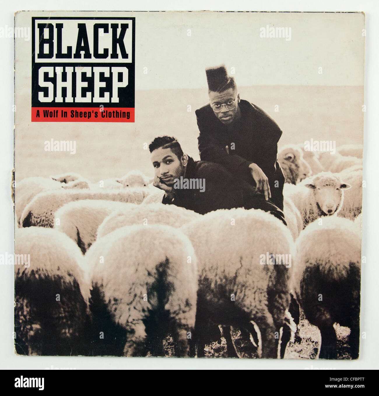 Black Sheep A Wolf In Sheeps Clothing Album Cover Stock Photo