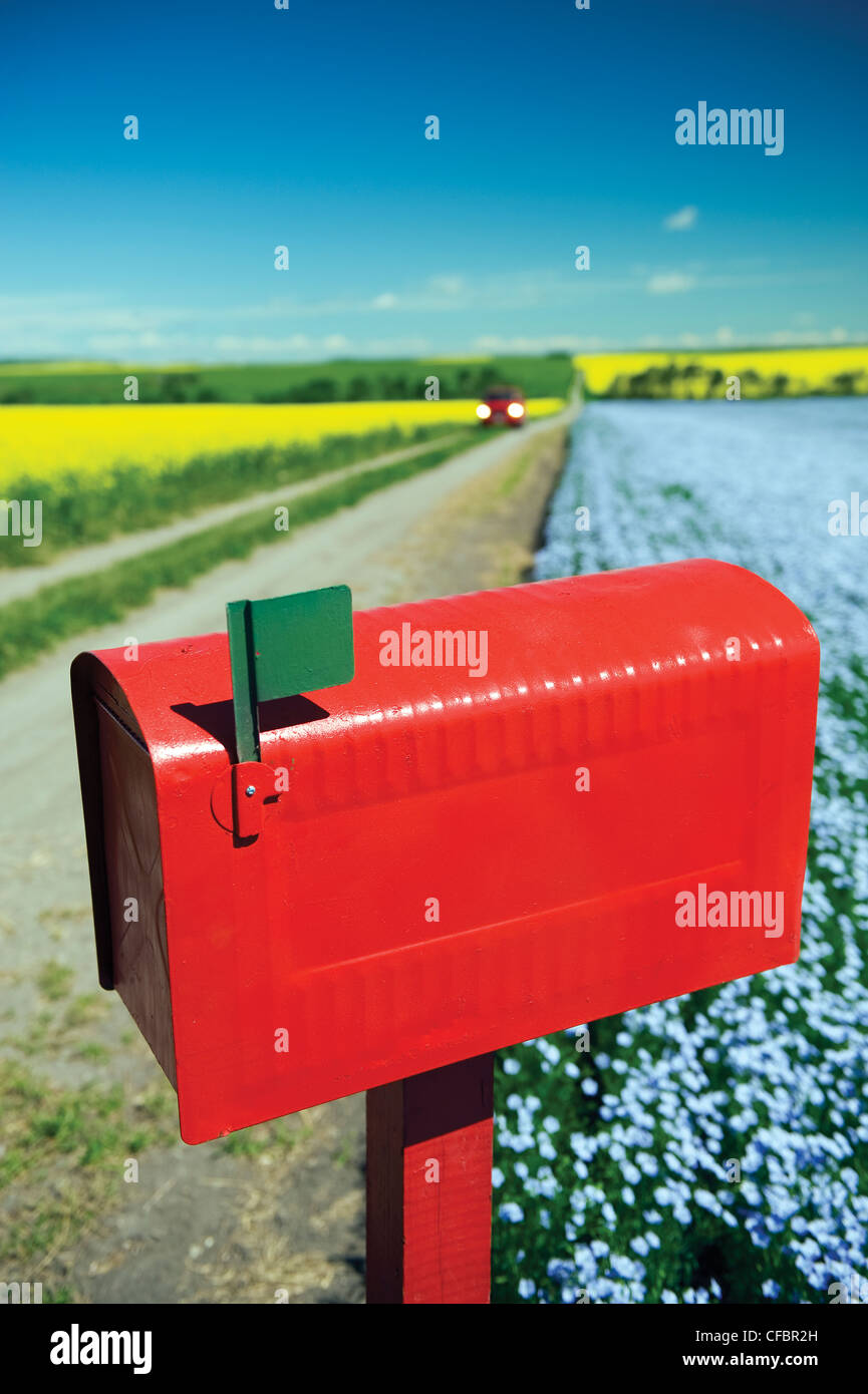 Mailbox along country road with flax and canola fields in the background near Somerset, Manitoba, Canada Stock Photo