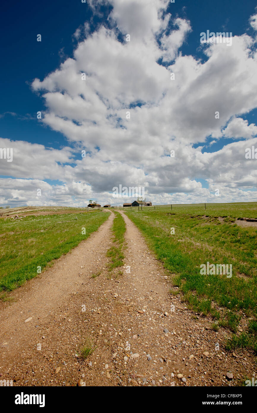 Dirt road to farm near Grasslands National Park, Saskatchewan, Canada. - Stock Image