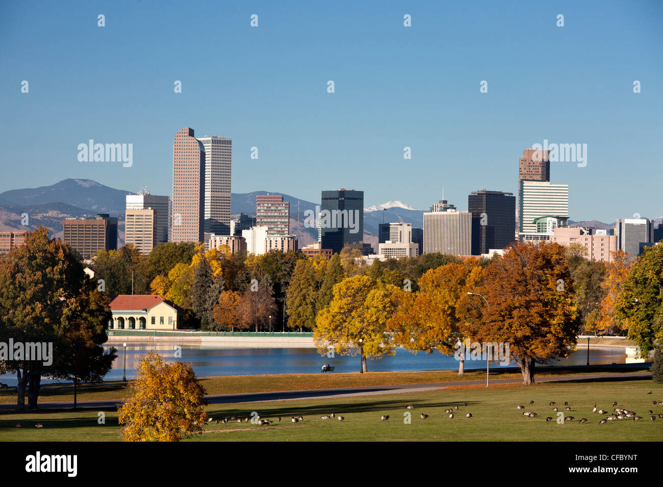 USA, United States, America, Colorado, Denver, City, Park, Downtown, Skyline, Autumn, architecture, city, pond, - Stock Image