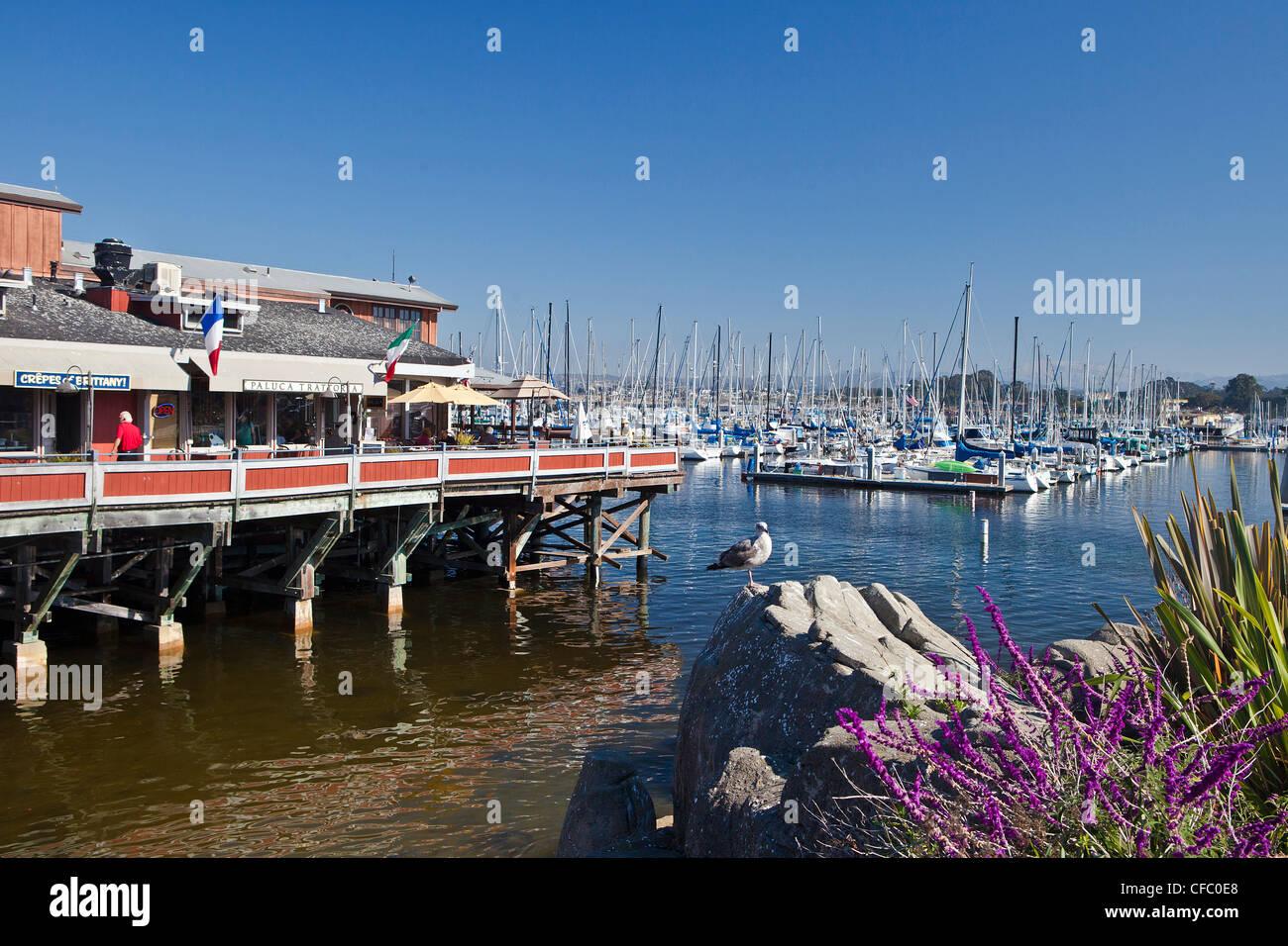 USA, United States, America, California, Monterey, City, Fisherman´s Wharf, boats, marina, morning, peaceful, - Stock Image