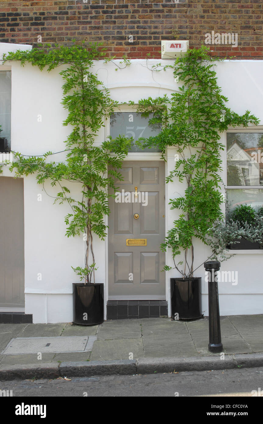 A Grey Front Doon A White Painted House With Tall Climbing Plants