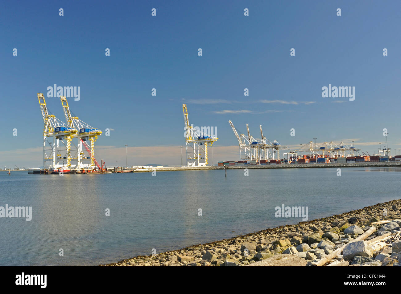 cranes for loading containers onto ships, Roberts Bank Coal Port, South Delta, British Columbia, Canada - Stock Image