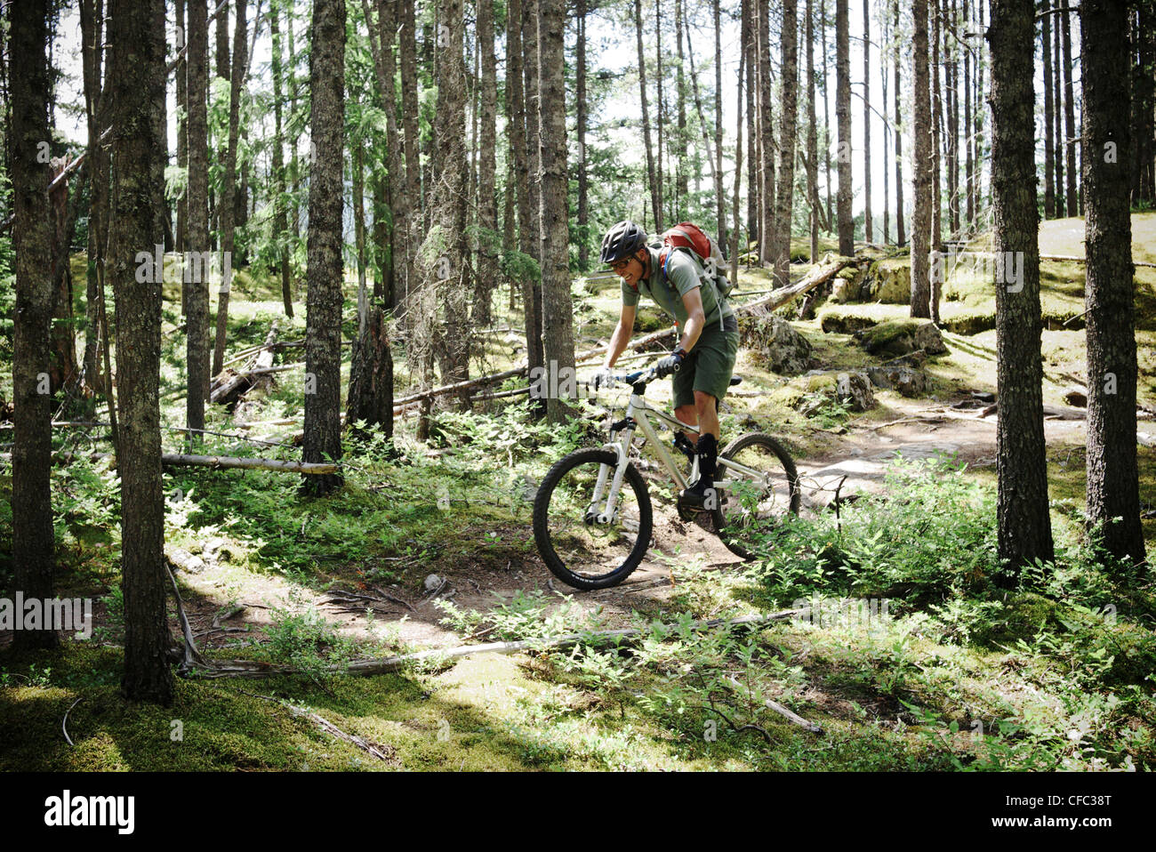 Man riding through the forest on Kill Me Thrill Me near Whistler, British Columbia, Canada - Stock Image