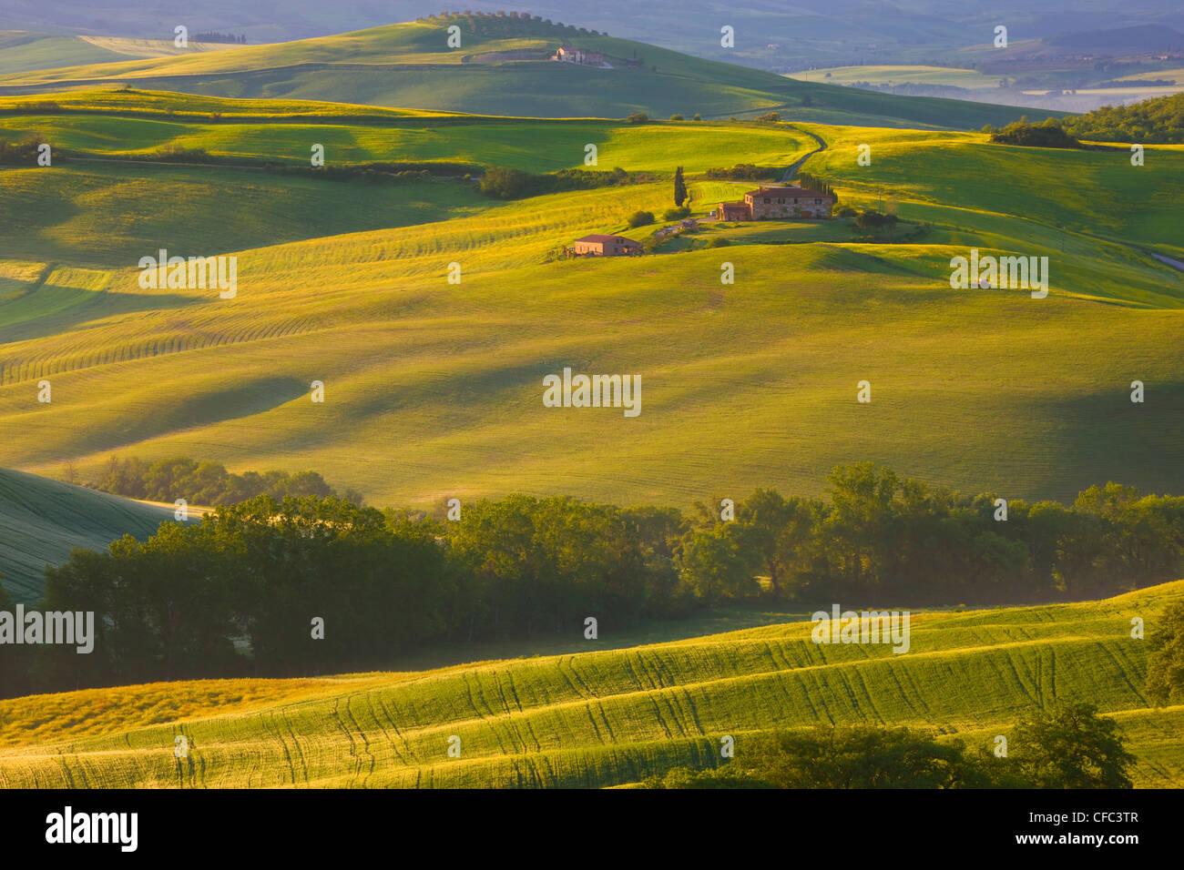 Countryside near Pienza, La Crete, Tuscany, Italy - Stock Image