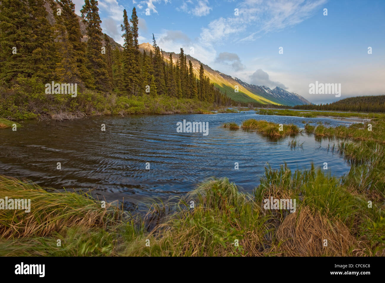 Annie Lake near Whitehorse, Yukon during a windy day in summer, Canada. - Stock Image