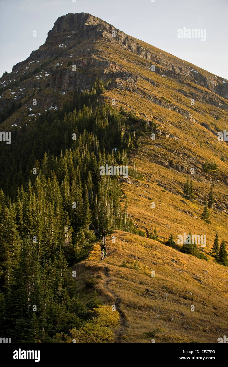 Mountain bikers riding in Kananaskis, AB - Stock Image