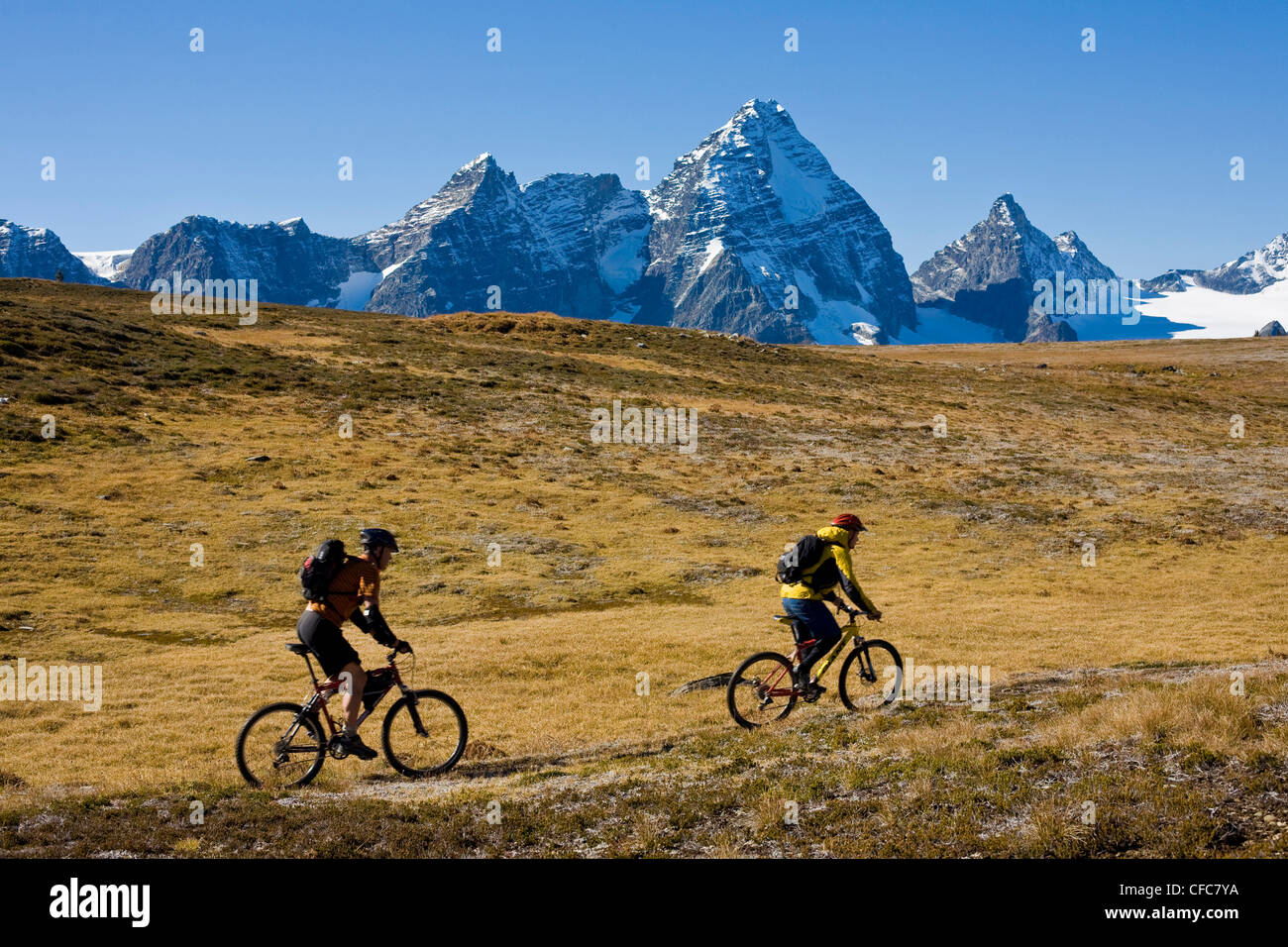 A couple of mountian bikers riding in the Purcell Mountains, BC - Stock Image