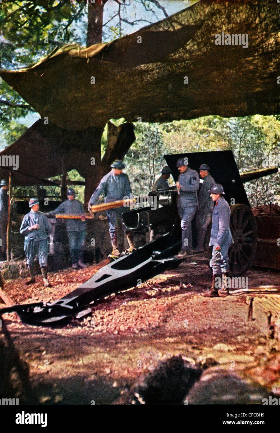 French, battery, heavy, guns, camouflage, netting, forest, Battle, Verdun, Western Front, World War I, War, World - Stock Image