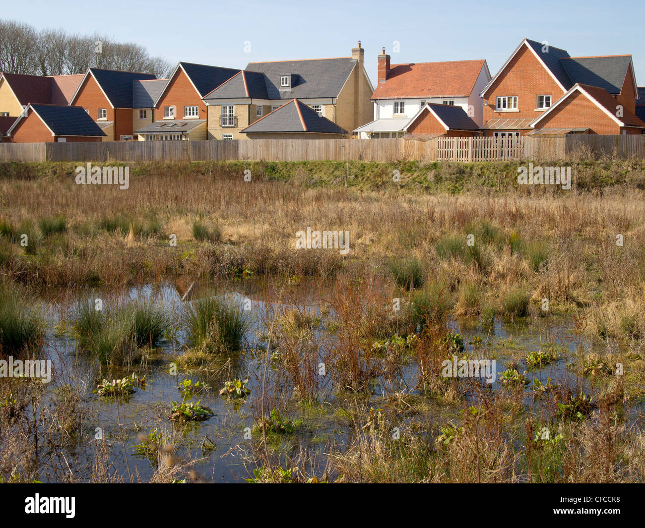 WAterlogged ground on a floodplain near new houses on a housing development in Suffolk, England. - Stock Image