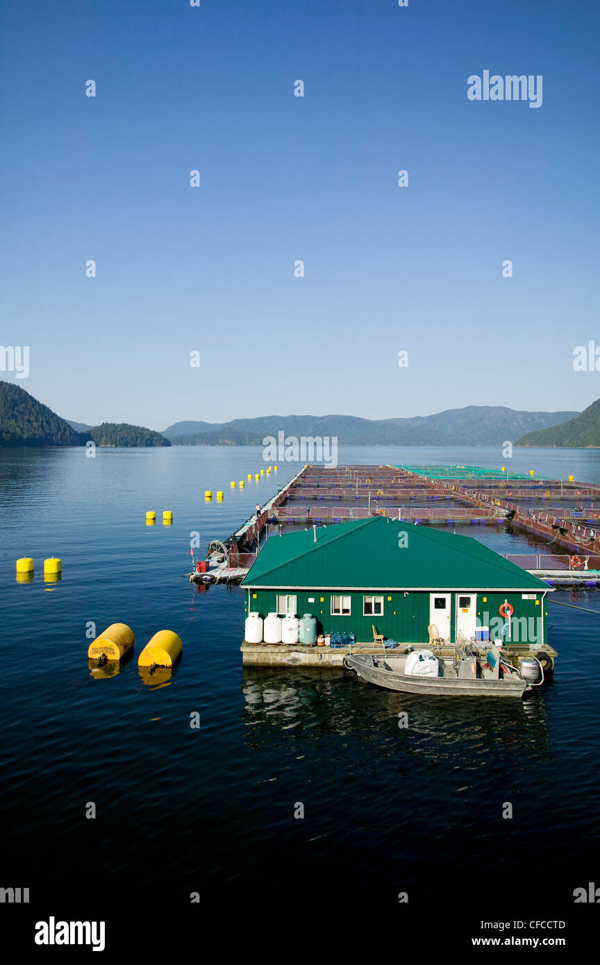 Salmon fish farm This particular farm is near Toba Inlet. Toba Inlet, British Columbia, Canada. - Stock Image