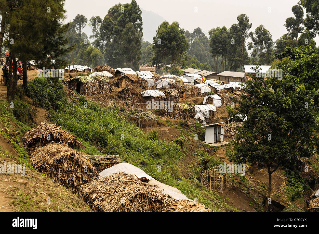26/01/2012: IDP camp at the village of Karonja on the outskirts of Masisi . Many families have set up makeshift Stock Photo