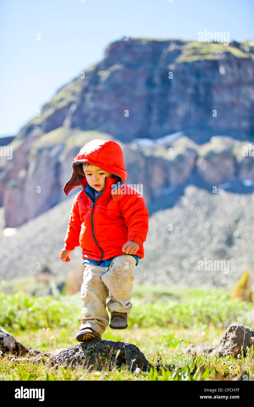 a little boy runs through an alpine meadow that is littered with wildflowers and a jagged cliff mountain rises in - Stock Image