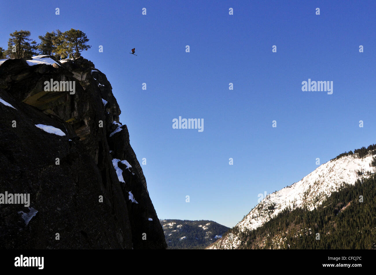 Pro skier Josh Daiek performs a double backflip ski BASE jumping off of Lovers Leap in Strawberry, CA. - Stock Image