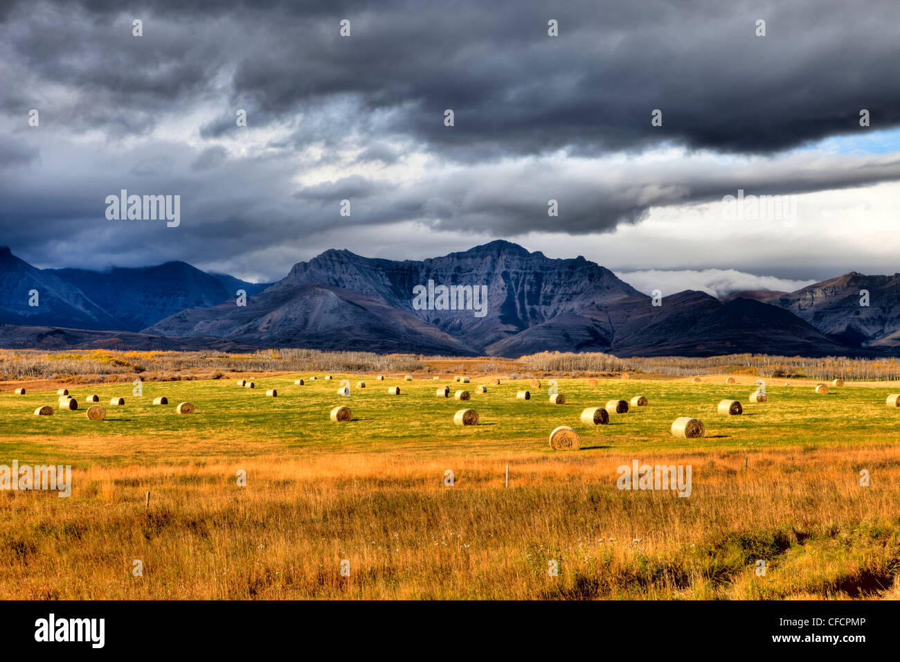 Prairies meet the Rocky Mountains, near Waterton Lakes National Park, Alberta, Canada Stock Photo