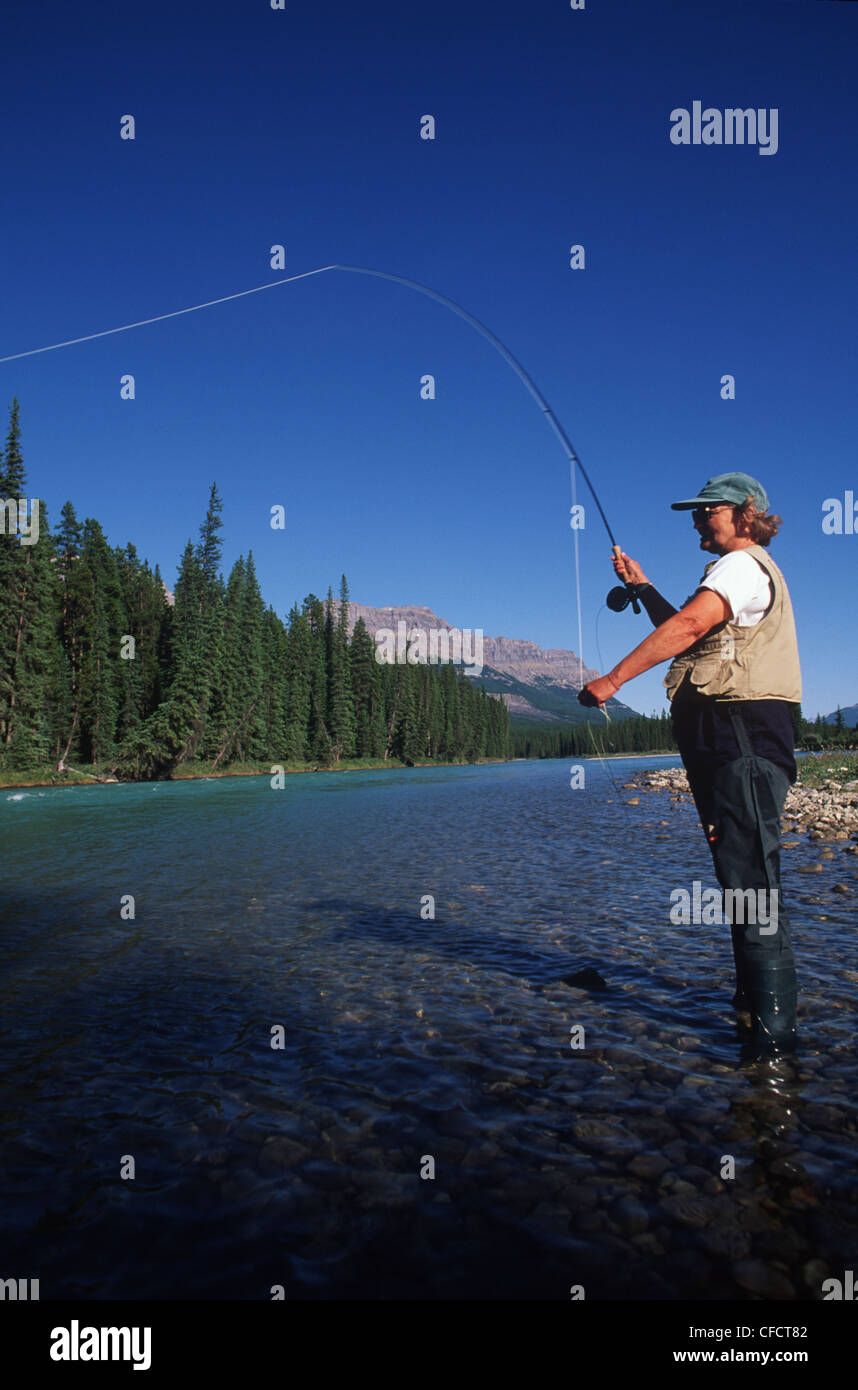 Near Lake Louise, woman fly fishes in river, Alberta, Canada. Stock Photo