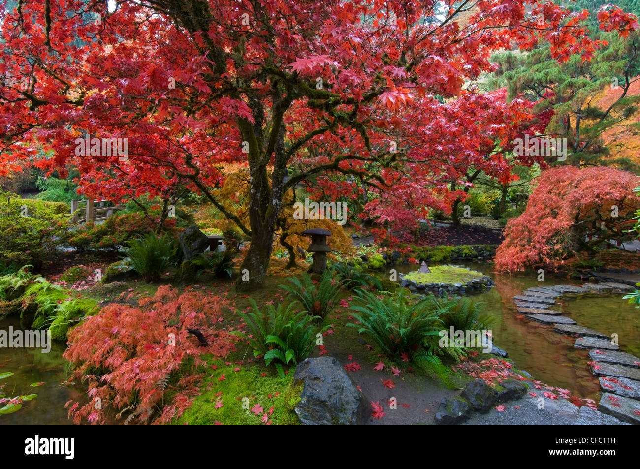 Japanese Garden in autumn at the Butchart Gardens, Victoria Stock ...