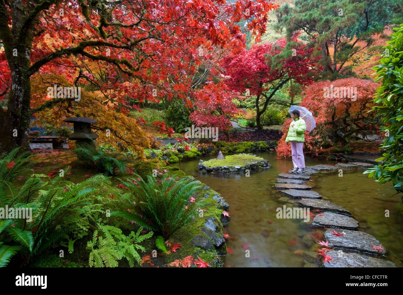 Woman in Japanese Garden in autumn at the Butchart Gardens, Victoria ...