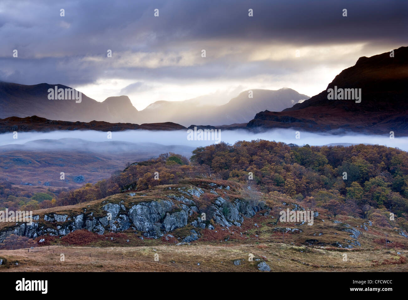 Early morning mist hanging over woodland and moorland near Loch Maree, Poolewe, Achnasheen, Wester Ross, Highlands, - Stock Image
