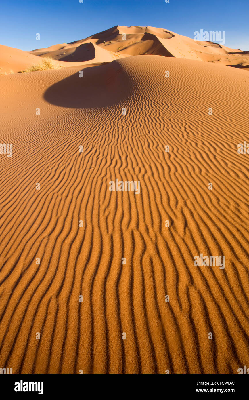 Rolling orange sand dunes and sand ripples in the Erg Chebbi sand sea near Merzouga, Morocco, North Africa, Africa - Stock Image