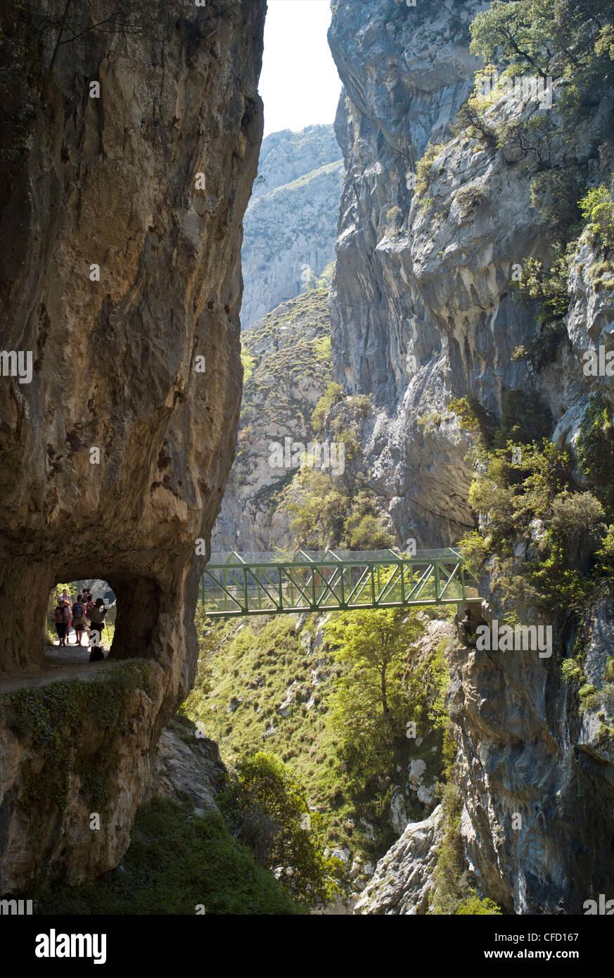 Footbridge over the Cares Gorge, Picos de Europa, Castilla y Leon, Spain, Europe - Stock Image