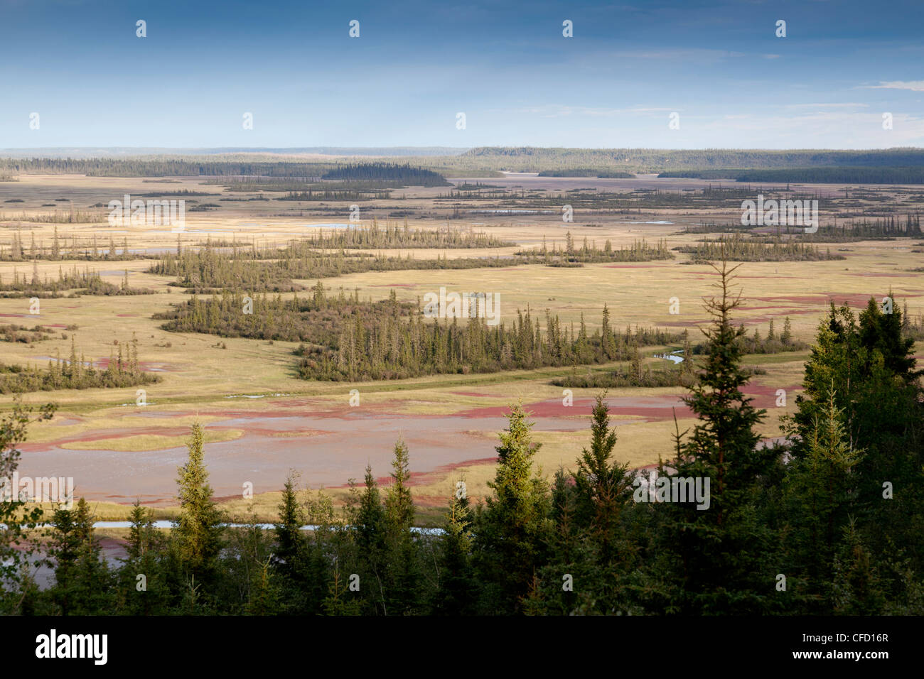 Salt Plains Lookout and Day Use Area, Wood Buffalo National Park located on the Northwest Territories and Alberta - Stock Image