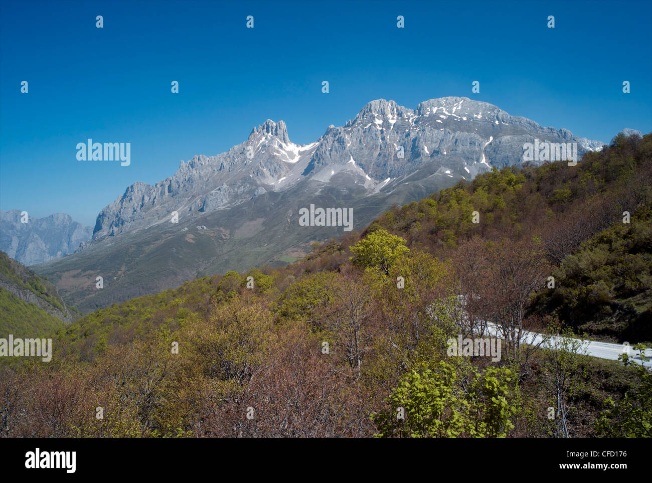 Picos de Europa, Cantabria, Spain, Europe - Stock Image