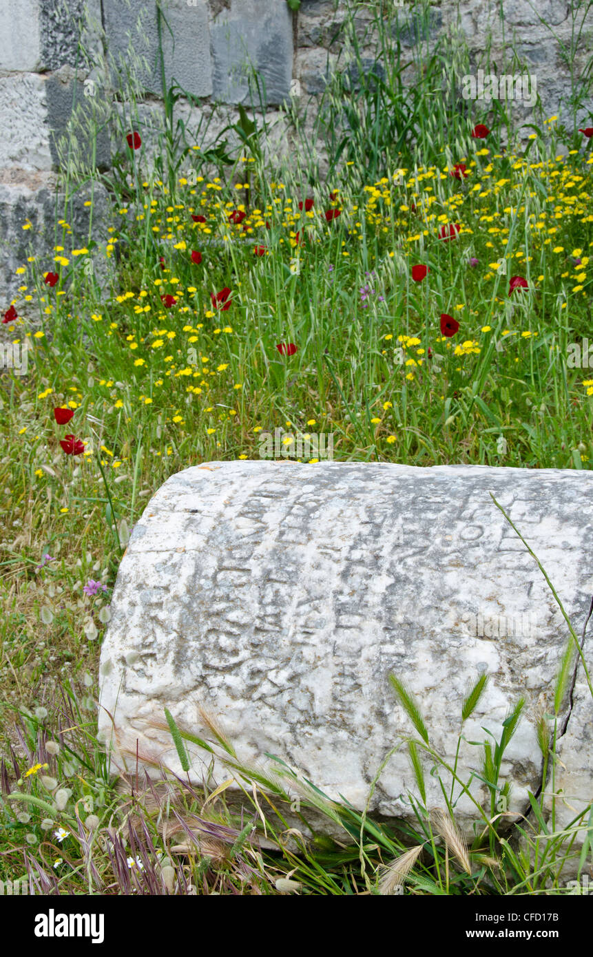 Old column with greek script, Miletus, an ancient Greek city on the western coast of Anatolia, Turkey - Stock Image