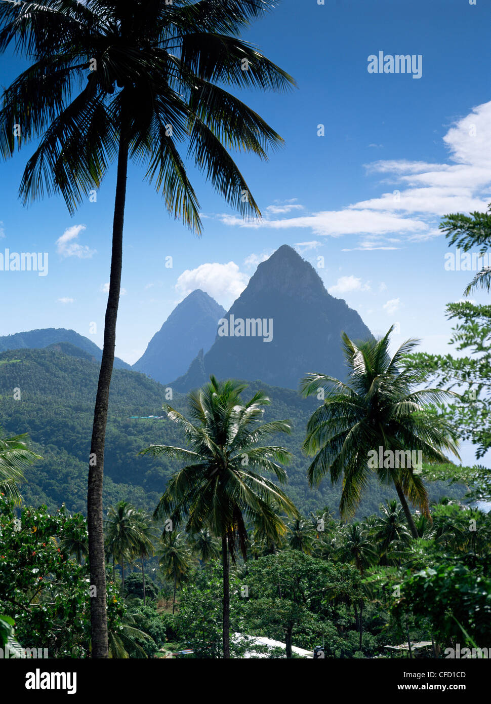 The Pitons, St. Lucia, Windward Islands, West Indies, Caribbean, Central America - Stock Image