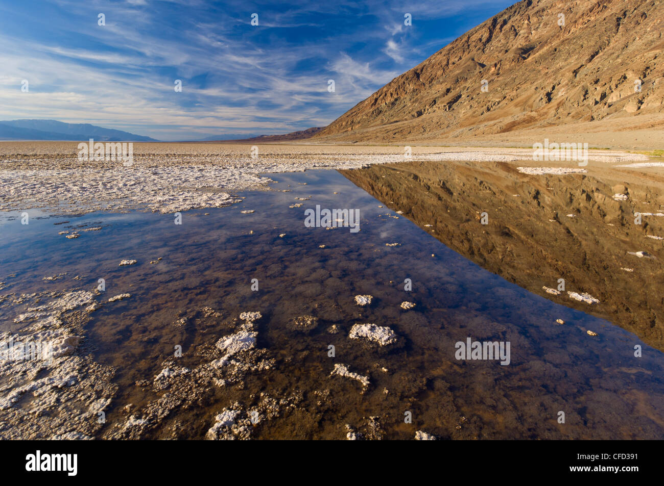 A springfed pool near the salt pans at Badwater Basin, Death Valley National Park, California, USA - Stock Image